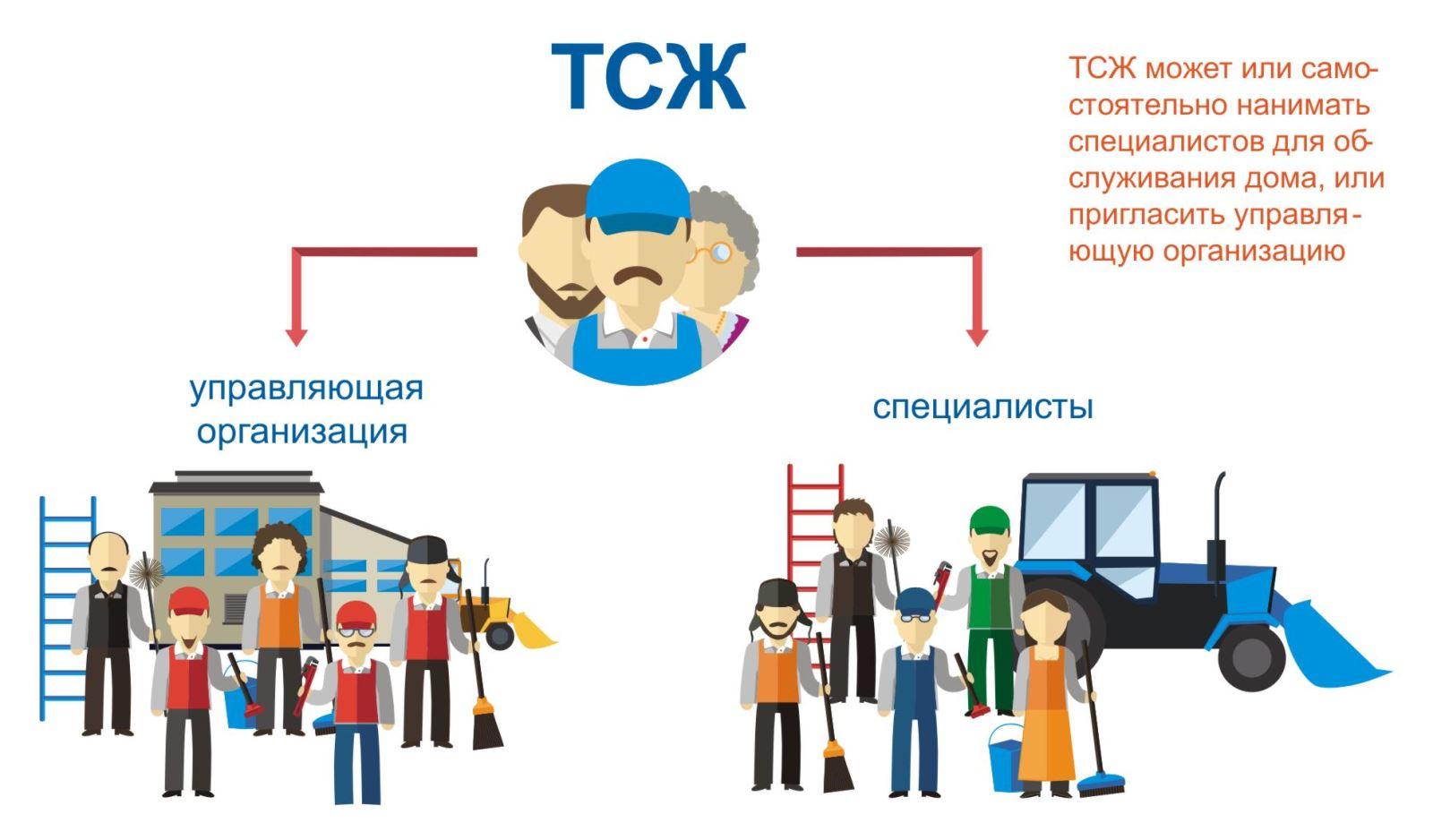 Организация работы ТСЖ