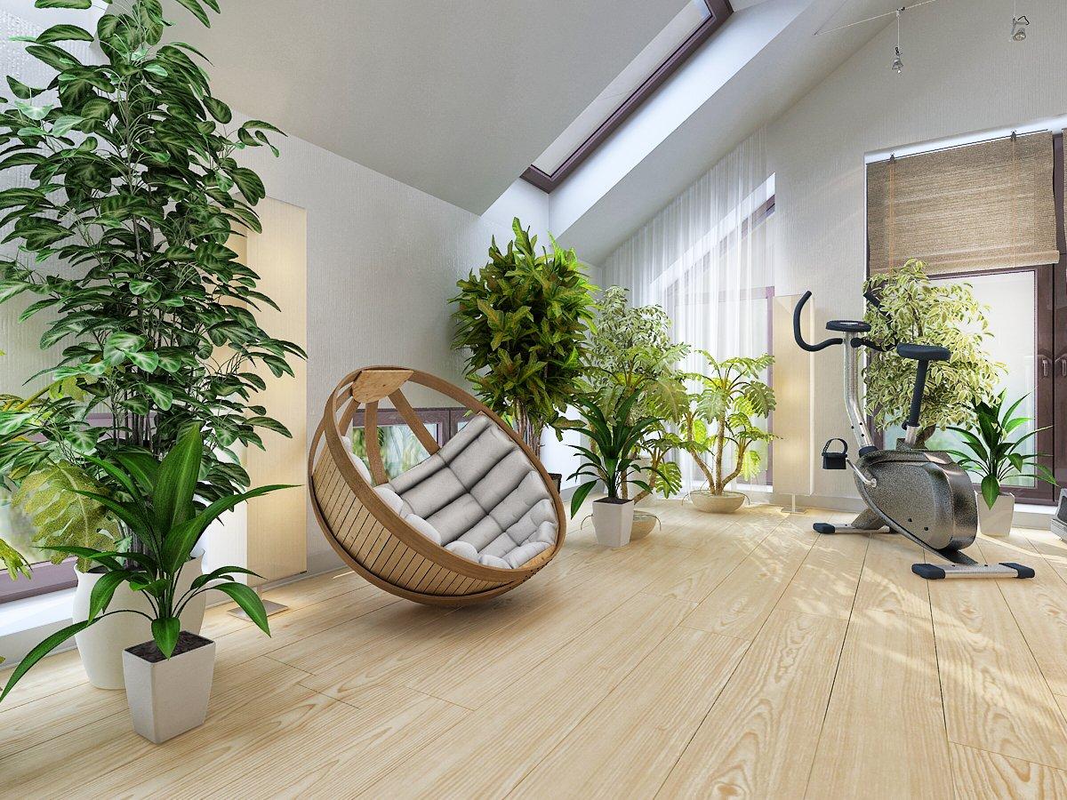 cvety-i-rasteniya-v-interere-kvartiry